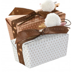 Boîte Carrée 350g de chocolats