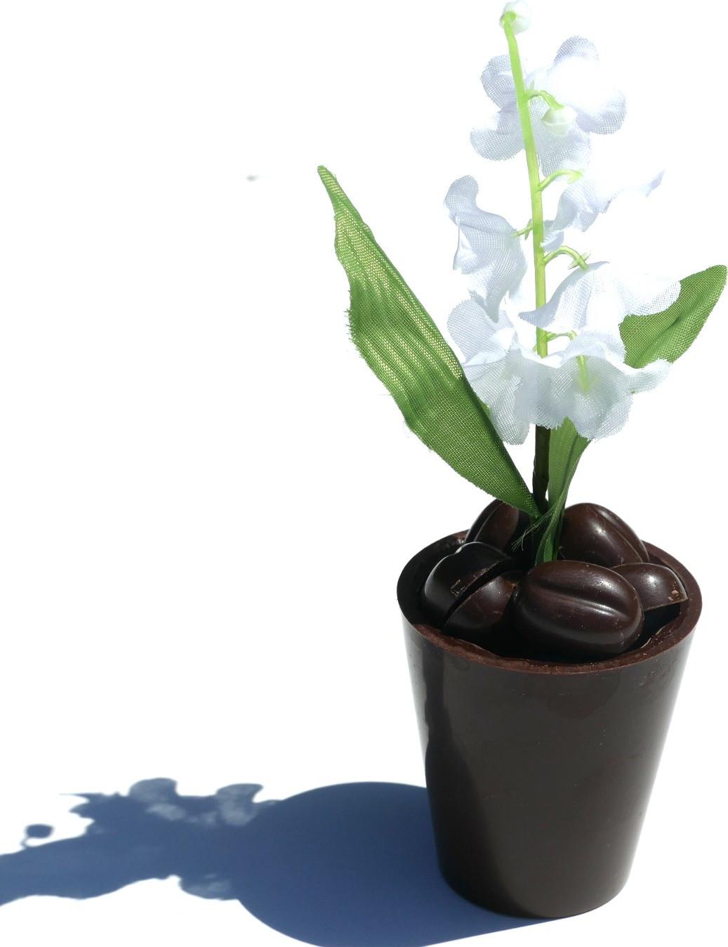 Ballotin 750g d'Amandas Avelinas Pâte de Truffe Cacao