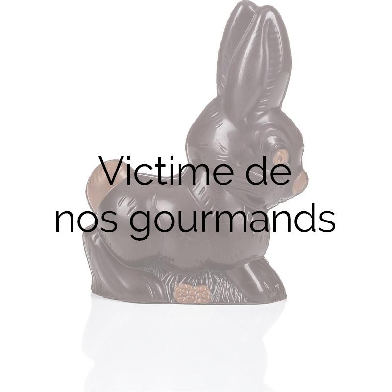 Easter Chocolate Bunny 100g