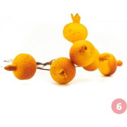 Piquet de grenades oranges